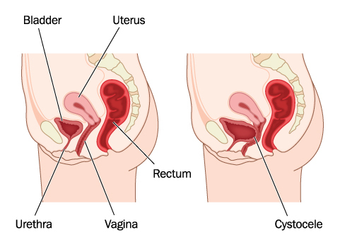 how-deep-is-a-womans-vagina